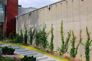 کابل سبز ساختمان شرکت مپنا بویلر